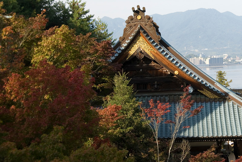 Beautiful autumn leaves hovering close to the rooftop of Daisho-in Temple in Japan