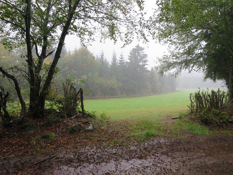 Van 10.00h tot 15.00h stromende regen