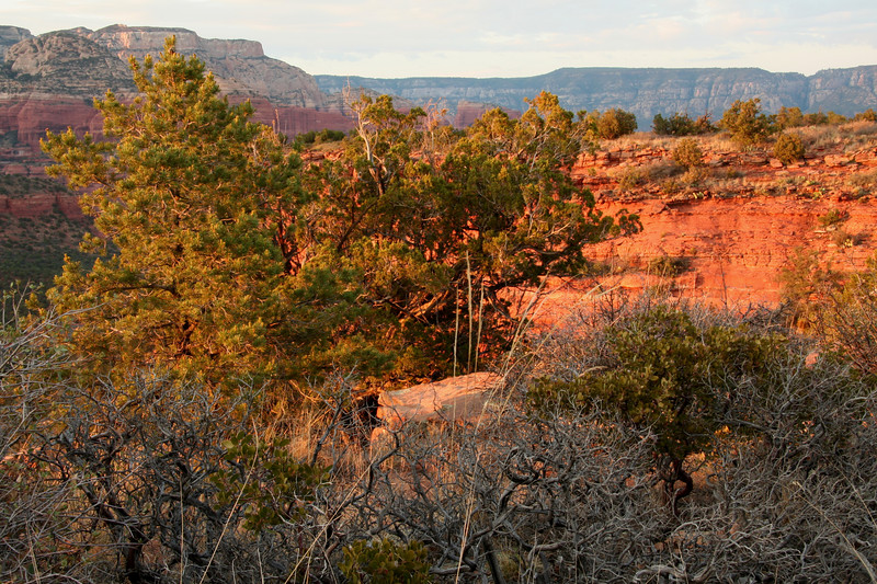 Sunset on Doe Mountain