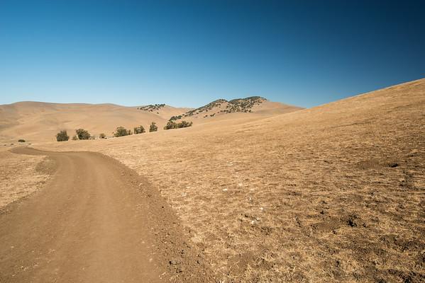 Brushy Peak RP