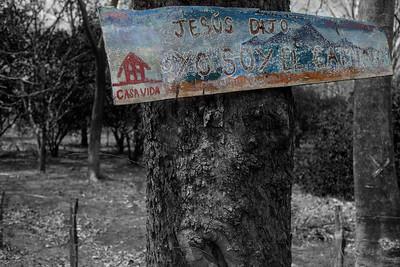 Tamarindo & Environs ~ March 2016