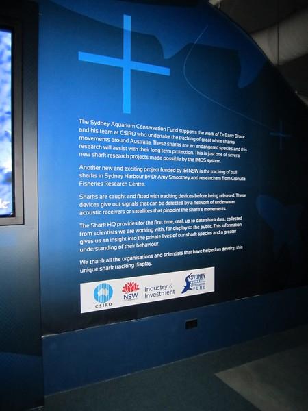 Sydney - Sydney Aquarium-30.JPG