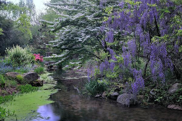 Stonehedge Garden