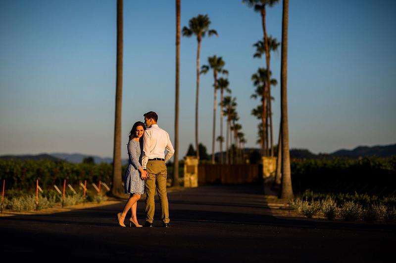 Engagement_0101a.jpg