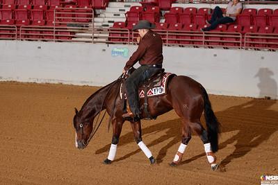 Wednesday Novice Horse Set 10 72-79