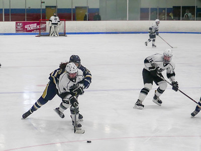 LHS Girls Ice Hockey vs. Shrewsbury