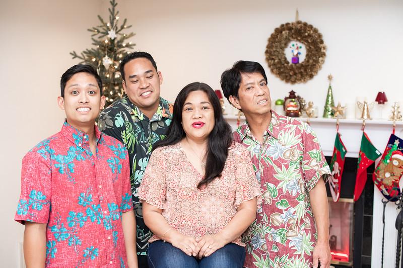 Hawaii - Christmas Family Photos-71.jpg