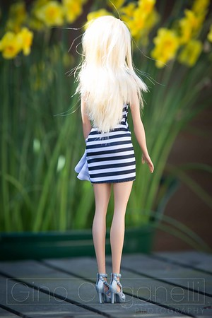 Fashion Shoot with a Barbie