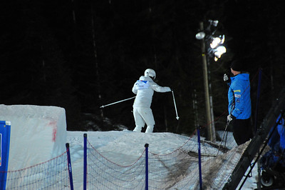 Freestyle Skiing World Cup 2009
