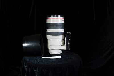 Canon 100-400 L