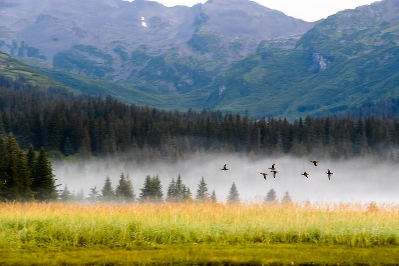 20170817__KT54382_2017-08-15 Alaska SSCL Tent Camp 4384.jpg