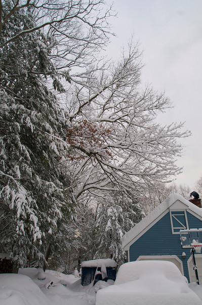 Snowstorm - Jan 27, 2011