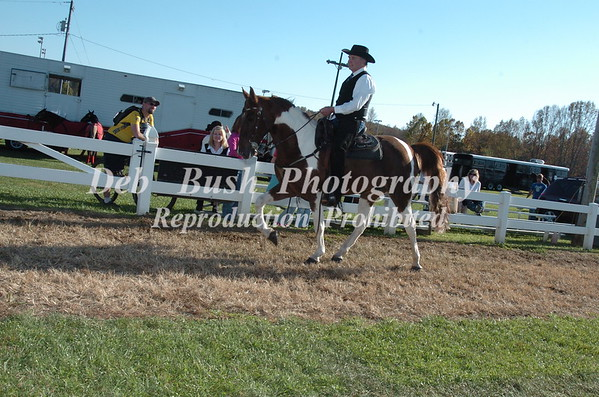CLASS 6A  SPOTTED SADDLE HORSE TRAIL PLEASURE