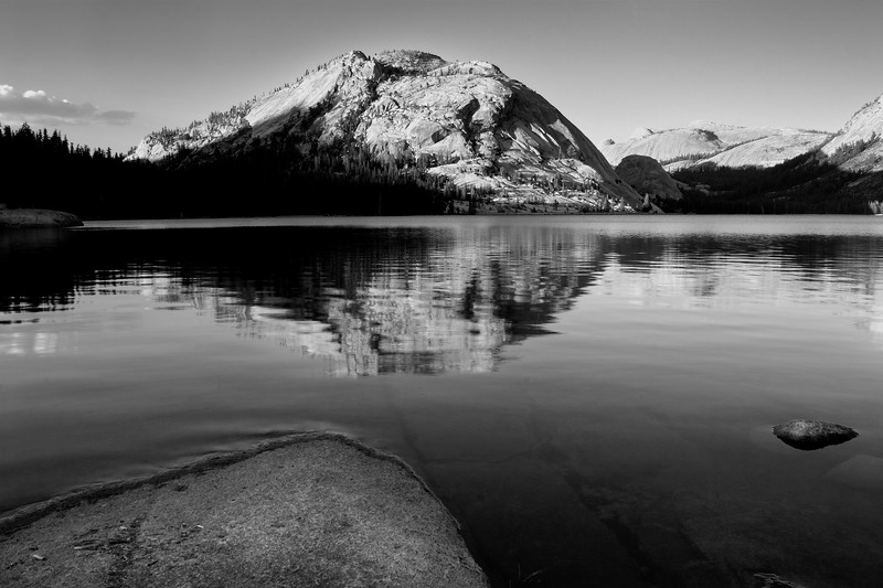 Polly Dome Reflections in B/W