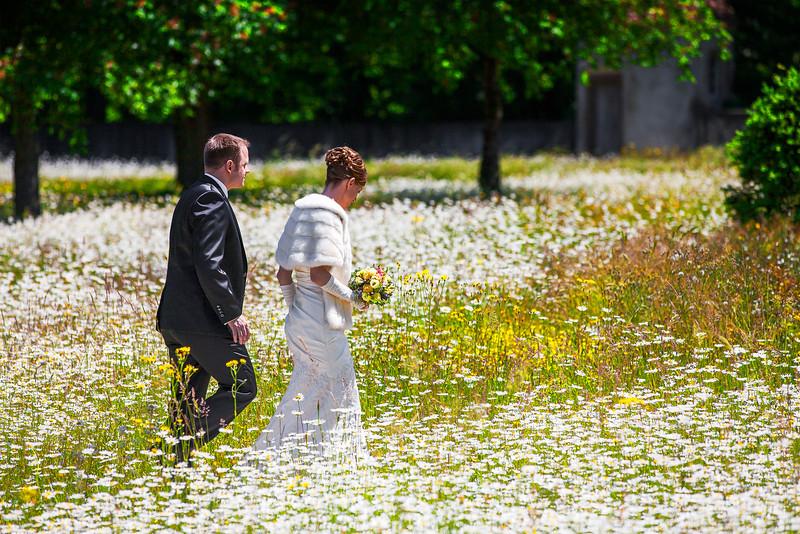 dreampix-Hochzeitsfotograf-Sommerwiese.jpg