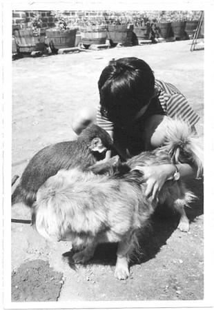 Luis Valente com macaco e cão