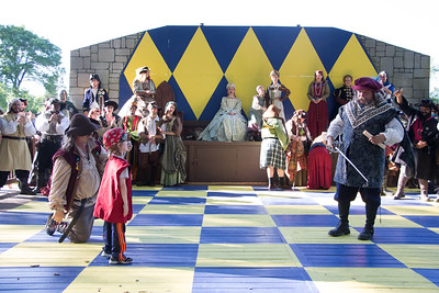 Quest for the Rose Knighting