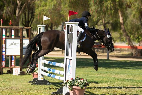 Hailey Weber - Master Jockey