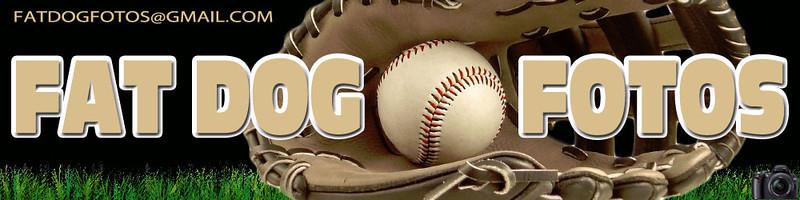 Baseball Spring banner Fat Dog Fotos