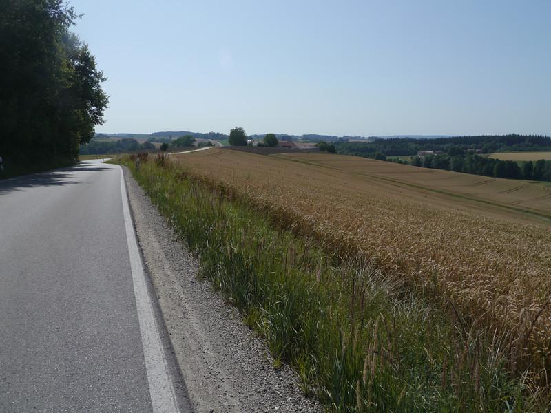 @RobAng 2013 / Ziegelstadel, Buchbach, Bayern, DEU, Deutschland, 480 m ü/M, 28/07/2013 10:08:32