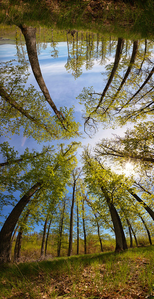 Looking up My first ever vertorama :)