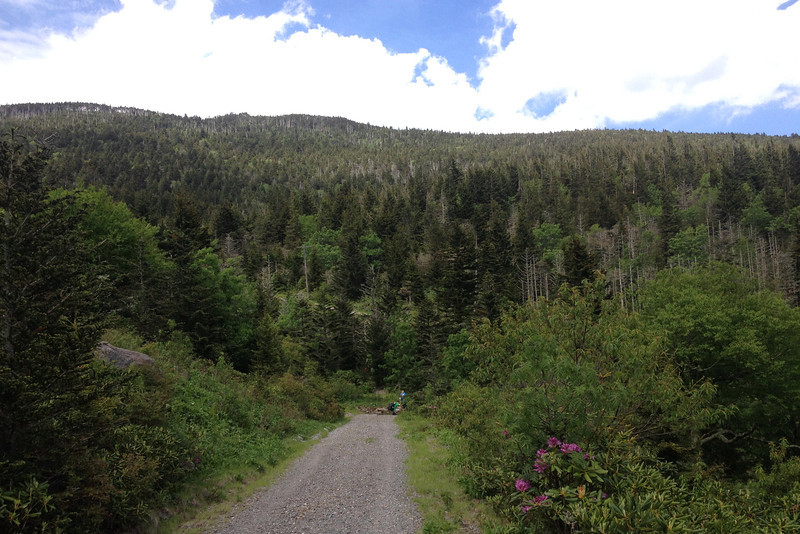 Commissary Trail (5,780')