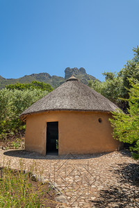 Kirstenbosch National Botanical_2064