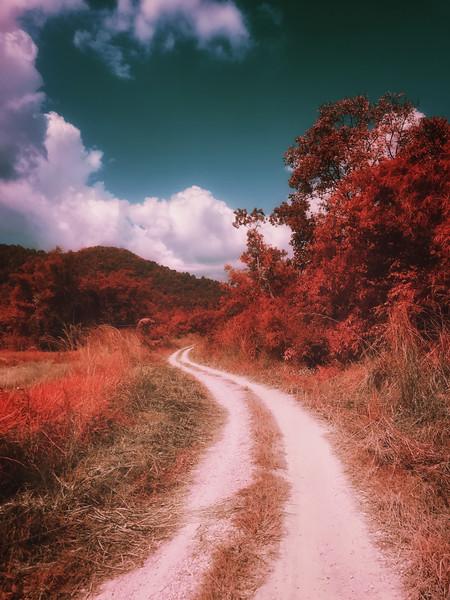 Farm trail, Thailand