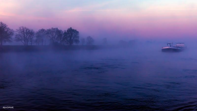 fog_6103.jpg