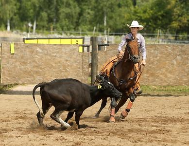 2014 Western Riding Sweden