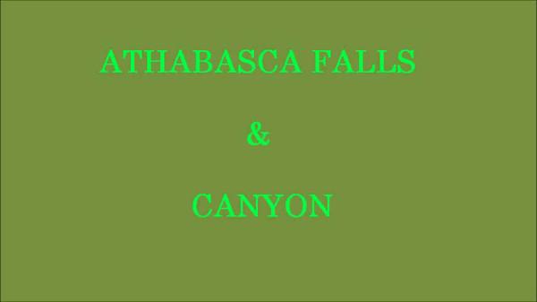 Athabasca Falls & Canyon