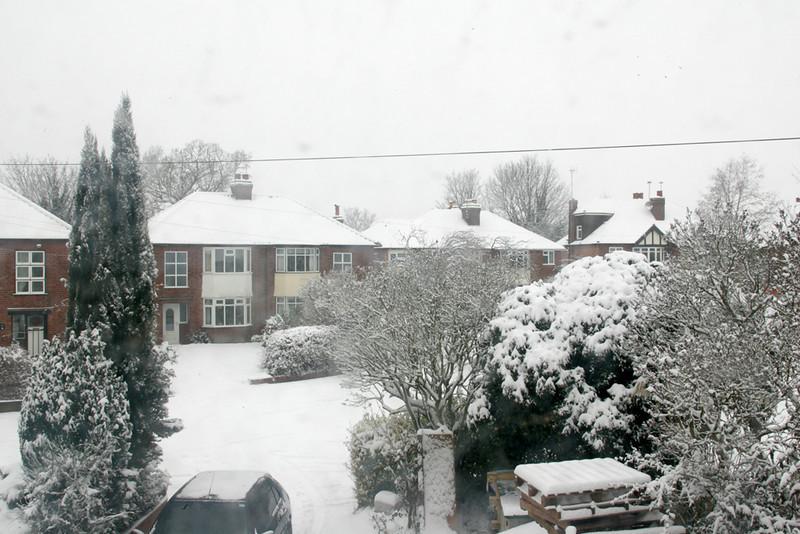 Snow 2010 079.jpg