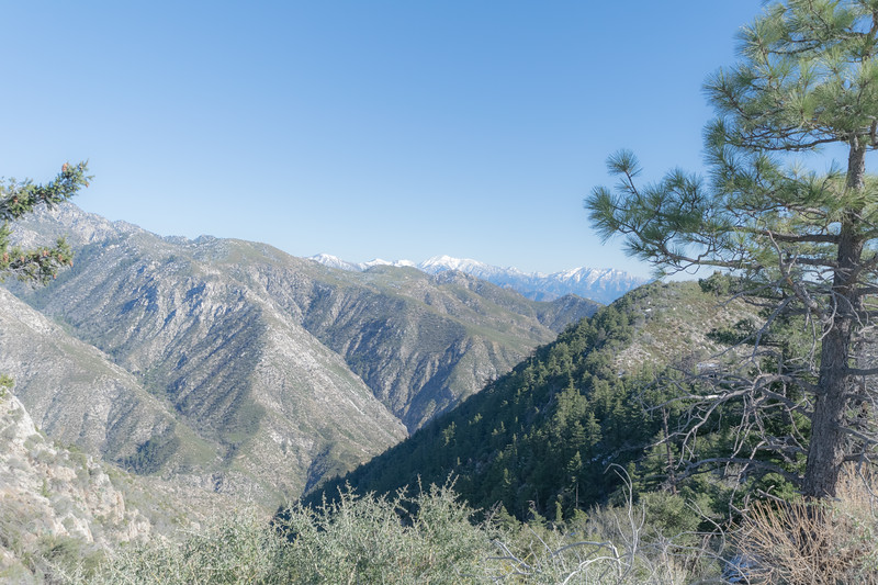 San Gabriel Mountain Landscape