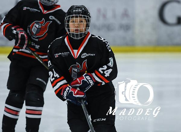 Göteborgs Ishockey Cup 2019-01-02: Nyköping Hockey Ungdom-Hanhals IF