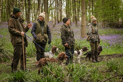Gundog Training Sessions 2019