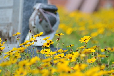 Cemetary flowers 4.28.18