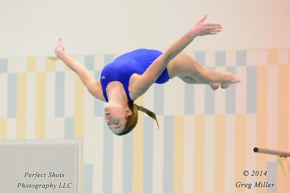 Women's 1 Meter 6 Dives