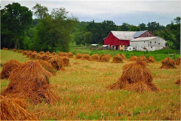 Zoar Ohio - Holmes County