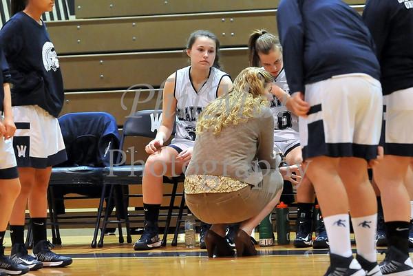 Wyomissing vs Berks Catholic Girls High School Basketball 2012 - 2013