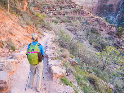Grand Canyon Hike to Phantom Ranch and Back