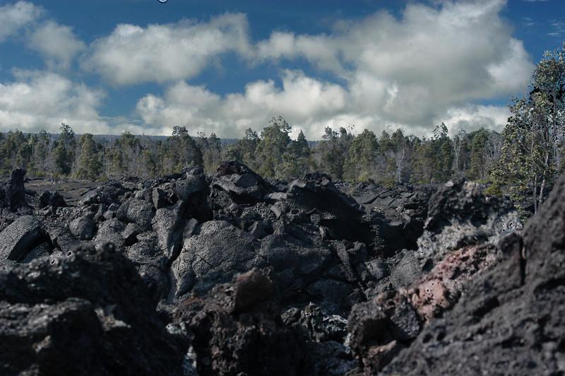 249- 20080412- Hawaii 15- Volcano Nat'l Park DSC_3021 fake HDR.jpg