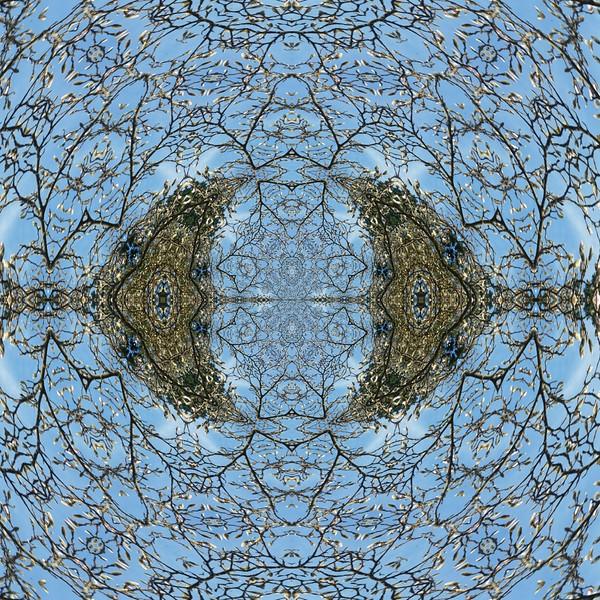 image%3A60765_mirror.jpg