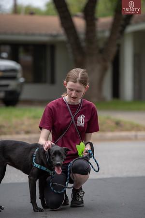 TUVAC Dog Walking - 033019