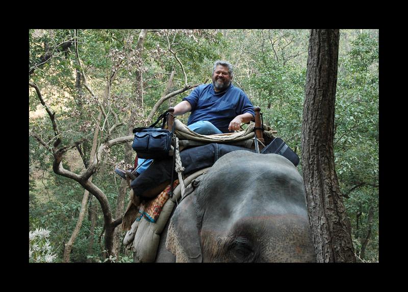 Safari in Jim Corbett - India - 2006.JPG