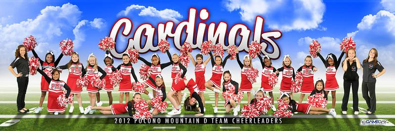 Pocono Mountain