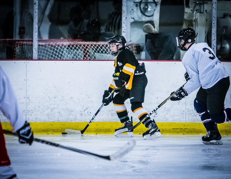 Bruins2-78.jpg
