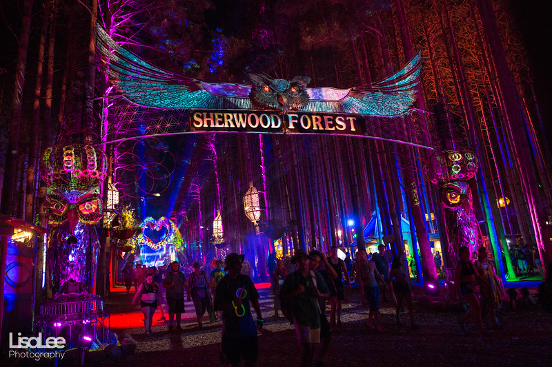 2018-06-30_ElectricForest_18.jpg