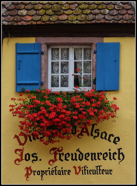 2011-09-Eguisheim-098.jpg