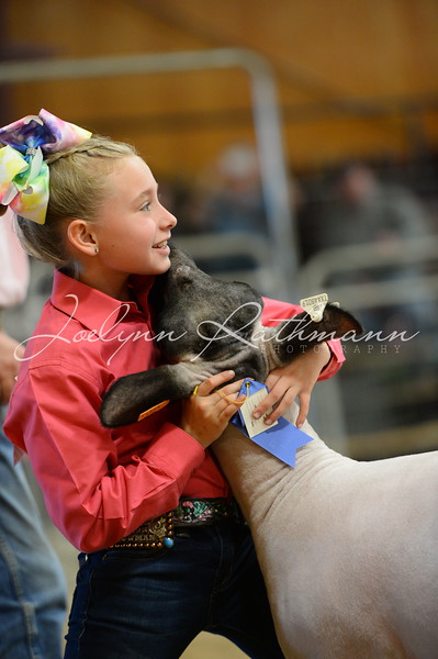 2019 Milam County Junior Livestock Show
