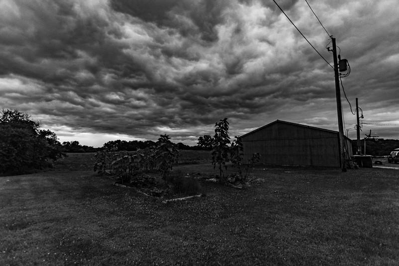 Osinga-Farm-Dawn-5.30amG.jpg